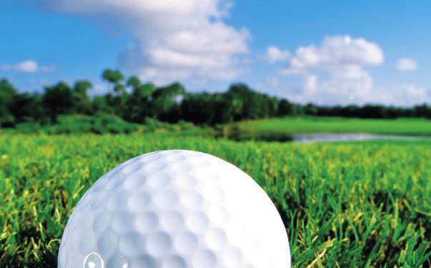 环保高尔夫球场