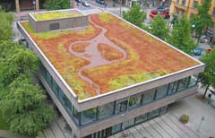 绿色屋顶让城市环境更加健康