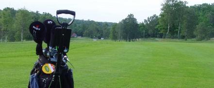 天然细菌大战高尔夫球场霉菌