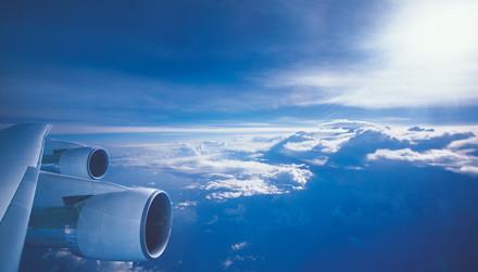 海藻——未来的飞机燃料来源